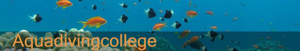 Aquadivingcollege